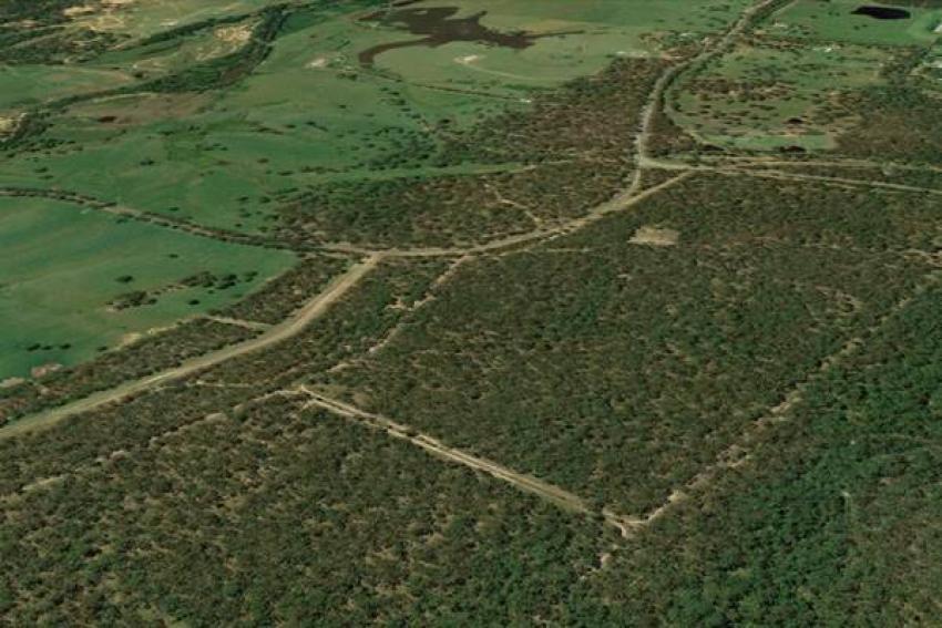 Δασικοί χάρτες: Πόσο κοστίζουν οι αντιρρήσεις